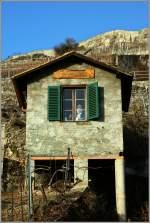 diverses/120997/es-gruesst-freundlich-gary-aus-den Es grüsst freundlich Gary aus den Ferien im Lavaux... (08.02.2011)